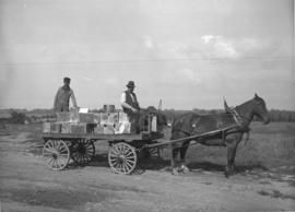 Candaian Kodak Co. horse drawn delivery
