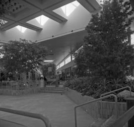 Don Mills Centre
